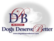 Dogs Deserve Better Postage Stamps: All Designs!