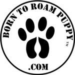 Born To Roam Puppy Seal