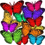 A Mass of Beautiful Butterflies on Tees and Totes