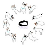 13 puppy poses Meiklo
