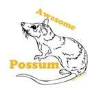 The Possum is Awesome