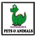 animal t shirt, rainbow dog, rainbow cat, rainbow penguins