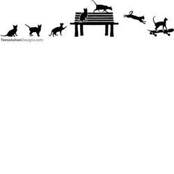 Skateboard Cats