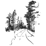 Art Winter Forest Path (Ink)