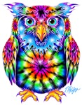 Hot Rod Owls On Fire!