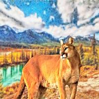 River Cougar