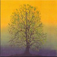 31.summertree..