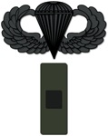 Warrant Officer 1 Pin-On - Airborne