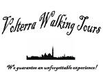 Voltera Travel