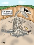 Transcendental Fossilization