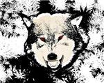 HEMP WOLF