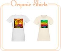 Organic Tshirts (womens)