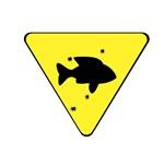 Fish X-ing