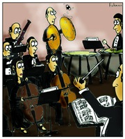 Orchestra and Fly