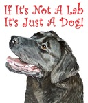 If It's Not A Lab