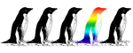 Rainbow Penguin