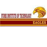 Fiume Institute of Technology Eagles Stripes