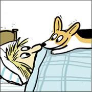 Wake up and smell the Corgi.