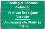 Don't feed the baboons!