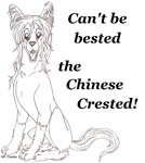 ~ CHINESE CRESTED ~