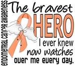 Bravest Hero I Knew Endometrial Cancer Gifts