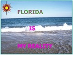FLORIDA IS MY REALITY