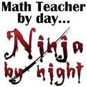 Math Teacher Ninja