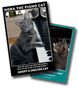 POSTERS - NORA THE PIANO CAT™ Posters