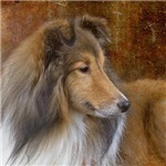 Work of Art Sheltie