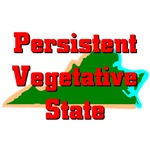 Virginia - Persistent Vegetative State