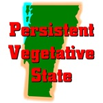 Vermont - Persistent Vegetative State