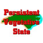 North Carolina - Persistent Vegetative State