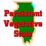 Illinois Persistent Vegetative State