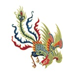 Chinese Cock Dragon