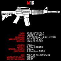 M16 Infographic