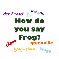 How do you say frog?