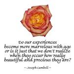 Marvelous Experiences