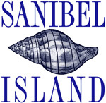 Sanibel Island Shell