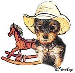 Yorkshire Terrier Cody