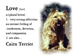 Cairn Terrier Love Is