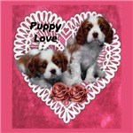 Cavalier King Charles Puppy Love