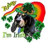 St. Paddy's Bluetick Coonhound