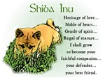 Shiba Inu Puppy T-shirts Gifts