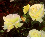 Peace Roses by Patty Benson