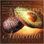 Artsy Avocado