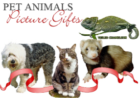 <b> PET ANIMAL PICTURE GIFTS</b>