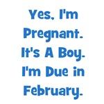 Pregnant w/ Boy due February