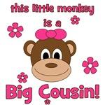 Little Monkey Is Big Cousin! Girl