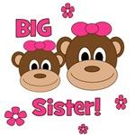 I'm The BIG Sister! Monkey