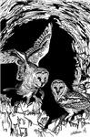 OWLS - GOTHIC/FANTASY